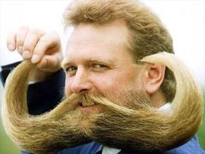 beard 7