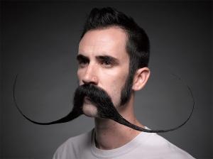 moustache (thisiscolossal.com)